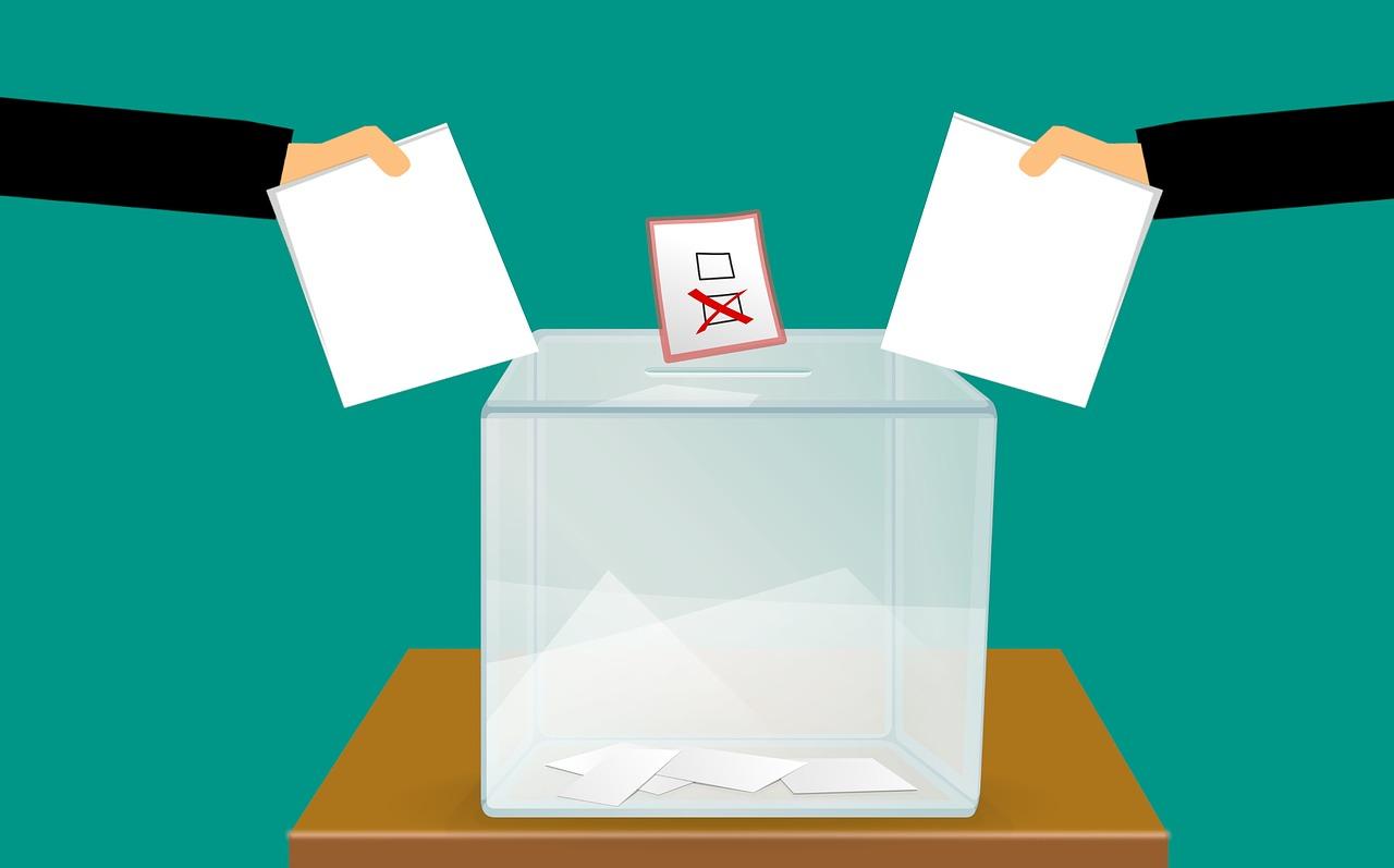 Référendum d'Initiative Citoyenne : la fausse bonne idée ?